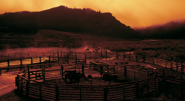 Paradise Guest Ranch - Wyoming dude ranch