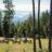 Top 20 Ranches Western Pleasure Ranch Idaho Dude Ranch